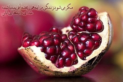 [تصویر: Khodaye%20Danehaye%20Anar.jpg]